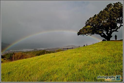 Pentax *ist D Test-pentax_rainbow.jpg