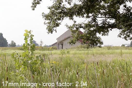 Crop Factor vs Zoom Effect-composite-17mm-cropped.jpg