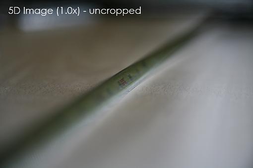 Sensor Size-5d-image-uncropped.jpg
