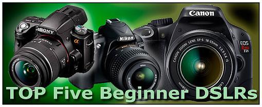 Best Entry-Level Digital SLRs Guide-top5-entry-dslr_550.jpg