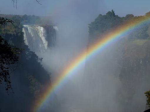 Experience South Africa, Take a Safari + Victoria Falls (Video and Stills)-207-medium-.jpg