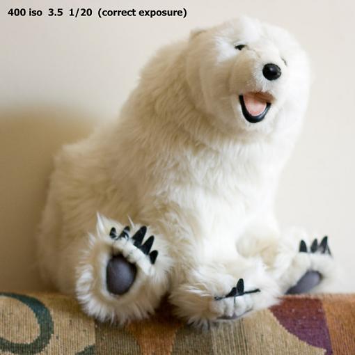 A low light photo tip-benny-bear-100.jpg