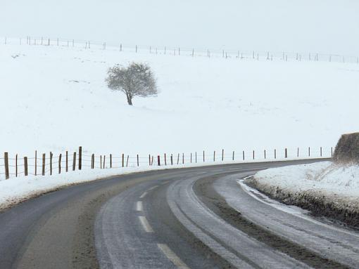 It snowed ...-lrp1000242.jpg