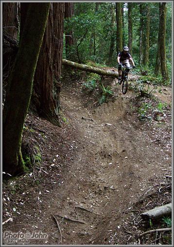 Mountain Bikes-p4290402.jpg