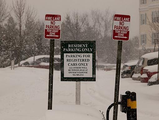 Snow Storm-pc192827.jpg