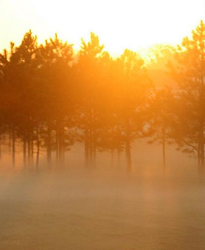 Sunrise and Fog-sunrise-fog.jpg