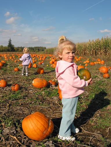 obligatory pumpkin shot-031018-05a-erikasasha.jpg