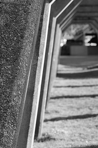 B W Arch-img_0740.jpg