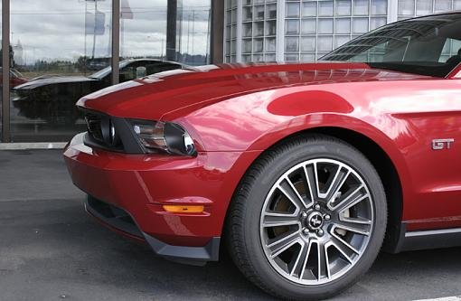 2010 Ford Mustang & 2010 Chevy Camaro-_mg_0021.jpg