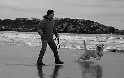 dog playing at the beach-manny_jose3_bw_altered_lowres.jpg