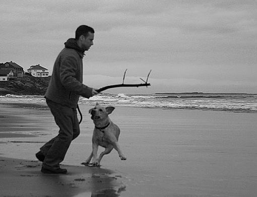dog playing at the beach-manny_jose2_bw_altered_lowres.jpg