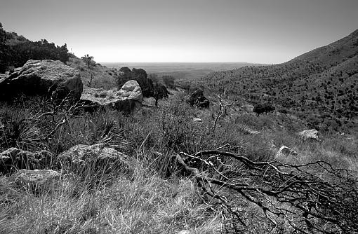 Guadalupe Mountains National Park-guadalupemtns_1_bw_april_2011_800.jpg