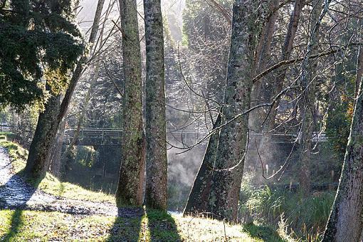 Beehive Creek-beehive-creek.jpg