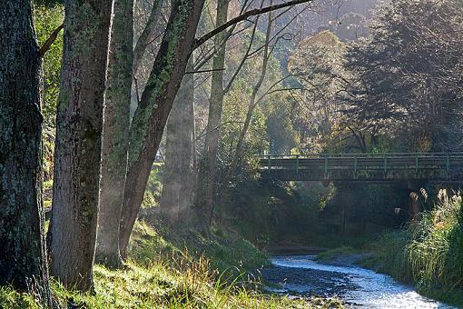 Beehive Creek-beehive-creek2.jpg