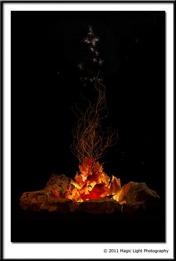 Campfire-_mg_5772.jpg