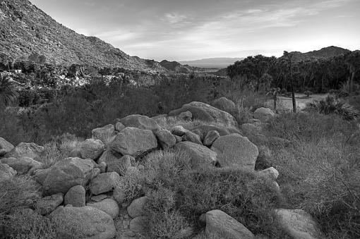 Guadalupe Canyon, Mexico - Image 1-dsc_9894_5_6_7_8_tonemapped_bw_800.jpg