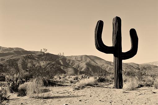 The Great American Southwest-dsc_9087_8_9_tonemapped_sepia_800.jpg