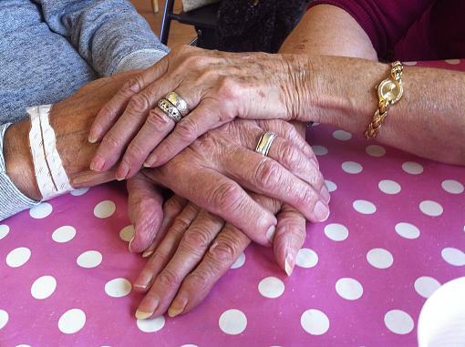 healing hands-img_2675.jpg