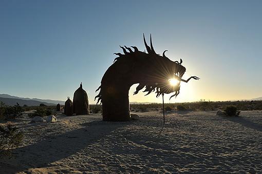 Sand Dragon!-dsc_1853_800.jpg
