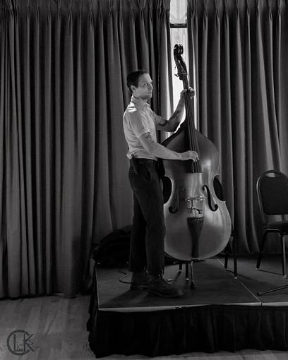 Upright Bassman-upright-bassman3.jpg