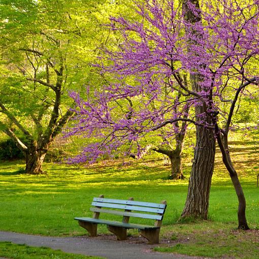 Seventh Post (DMG) @ the Arboretum-dsc_0061.jpg