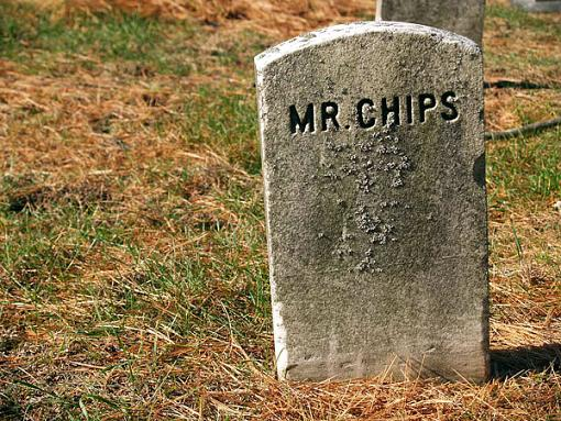 ...November Photo Project: The Cemetery...-mr-chips-58-.jpg