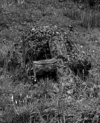 ...November Photo Project: The Cemetery...-crw_0660-01-b-w-640.jpg