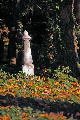 ...November Photo Project: The Cemetery...-clicks21223.jpg