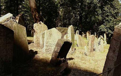 ...November Photo Project: The Cemetery...-dscn0162xx.jpg