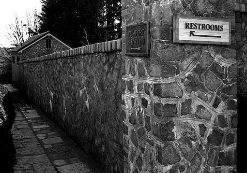 January Photo Project: Public Restrooms-yousaytomahto188.jpg