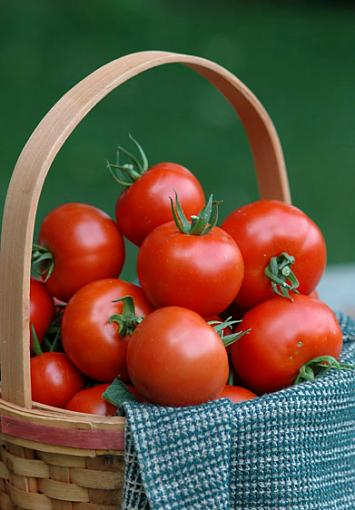 April Photo Project: RED-tomato640-crop.jpg