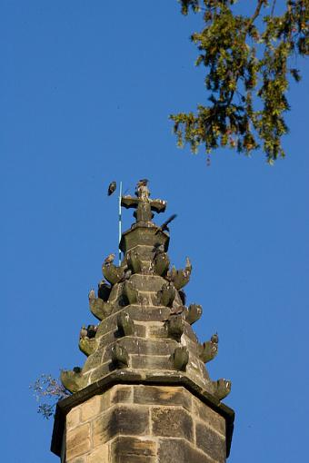 October Photo Project: Look Up-pa3p0854.jpg