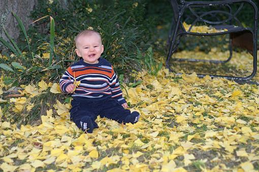November Photo Project: Autumn Colours-j_fall_colors.jpg
