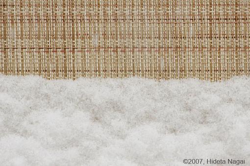 December Photo Project: Textures-textures-new-2.jpg