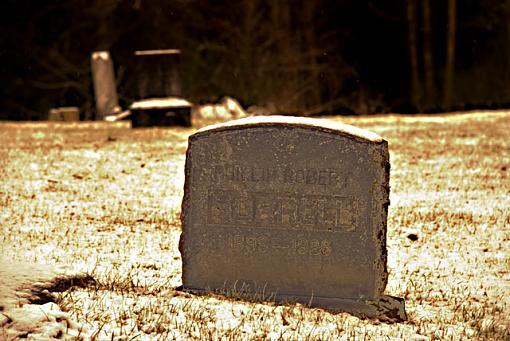 January Photo Project: Open-dsc_0003-003.jpg