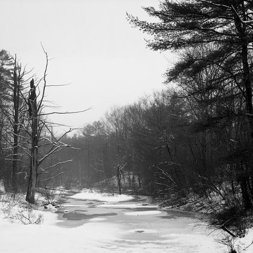 February Photo Project: Lanscapes-02052008-9.jpg