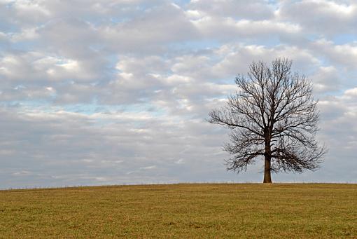 February Photo Project: Lanscapes-dsc_1159-4c-640.jpg