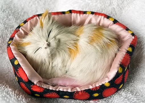 March Project: Found Still Life-sleeping-kitty.jpg