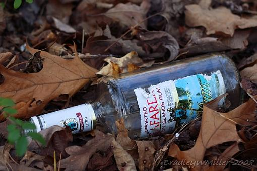 March Project: Found Still Life-img_3062.jpg