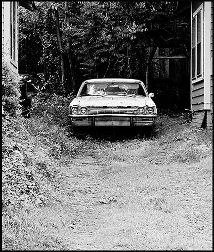 August Project - Cars-driveway.jpg