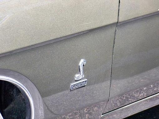 July project.-ford-torino-cobra-emblem-pr.jpg