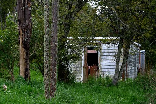 September, '09 project:  Doors-shed.jpg