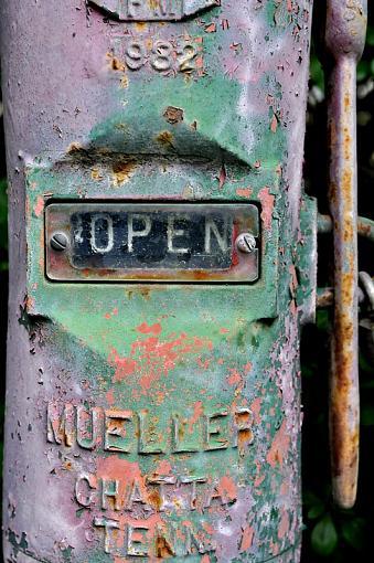 open or not-_csc2645.jpg