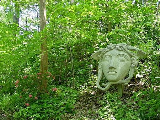May project...GREEN-face-garden.jpg