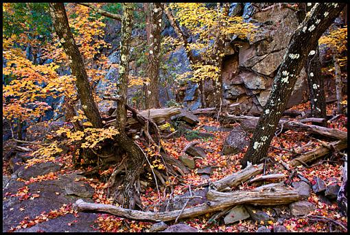 October project...Fall! or Spring if you are south of the equator-boot-canyon-chisos.jpg