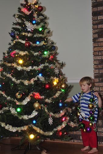 Decorating the tree & grandson-_dsc1920.jpg