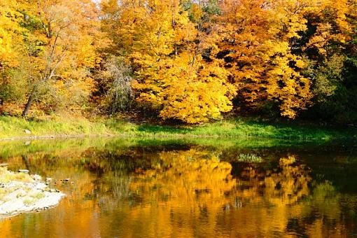 October Project : Fall Atmosphere-img_4845.jpg