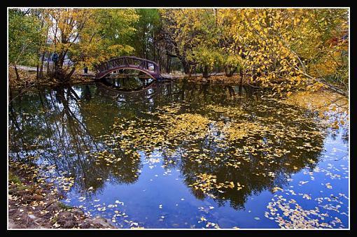 October Project : Fall Atmosphere-leavespond1.jpg