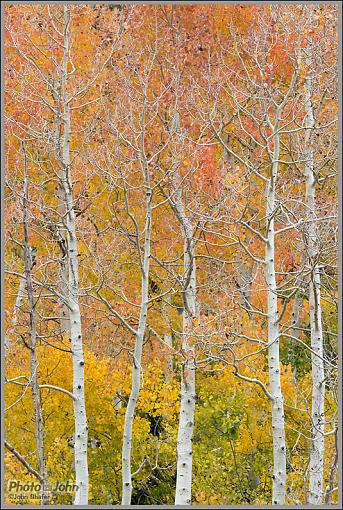 October Project : Fall Atmosphere-dsc_0170.jpg