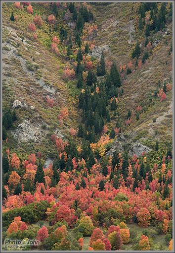October Project : Fall Atmosphere-dsc_0053.jpg